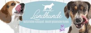 Landhunde-Start_1920x1920